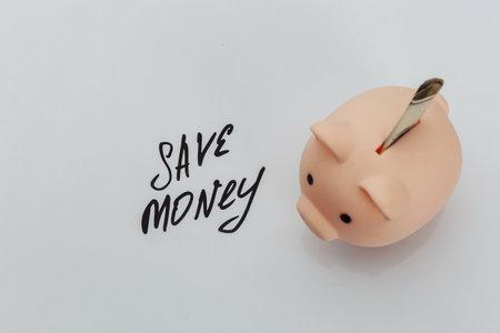 Savings in piggy bank and handwriting phrase