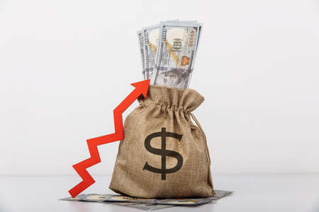 Money bag with dollar sign and red arrow up. Influx of investment and capital, increase of wealth