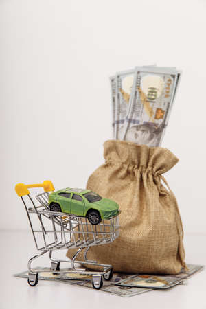 Model of car with money bag on white background. Vertical image