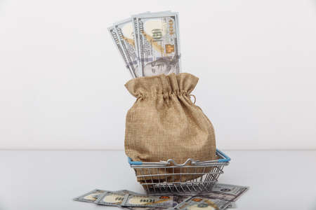 Dollar money bag on a shopping cart. Loans and microloans concept