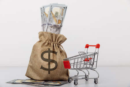 Dollar money bag and a shopping cart isolated on white background. Loans and microloans concept