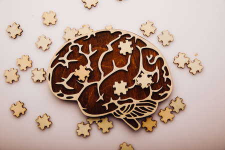 Brain with wooden puzzles. Mental Health and problems with memory