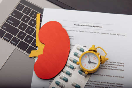 Model of kidney,pills, alarm clock and healthcare contract, early diagnostic concept