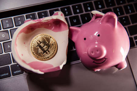 Bitcoin coin with laptop and piggy bank, Cryptocurrency investment concept Фото со стока