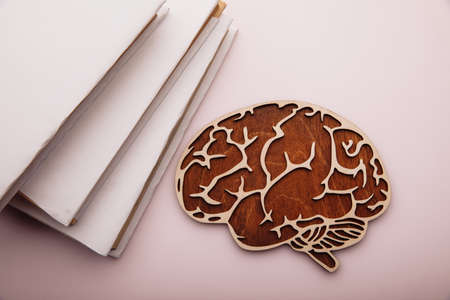 Wooden model of brain and books Фото со стока
