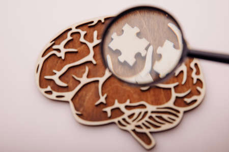Model of brain and wooden puzzles with magnifier, search a solutions