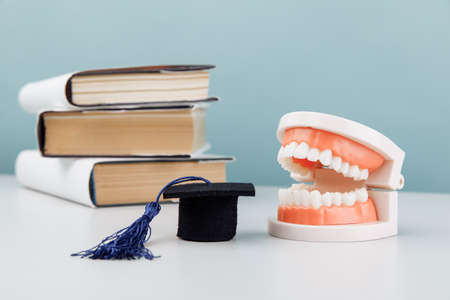 Model of jaw and graduation cap with books on the table. Medical education concept