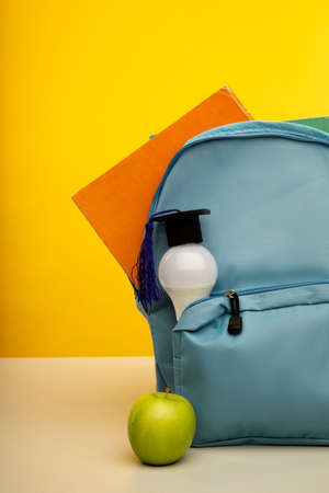 Bright backpack and bulb, vertical image