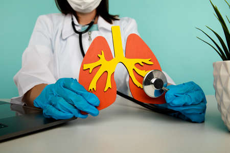 Doctor in gloves is touching a lung model with a stethoscope at office. Healthcare concept