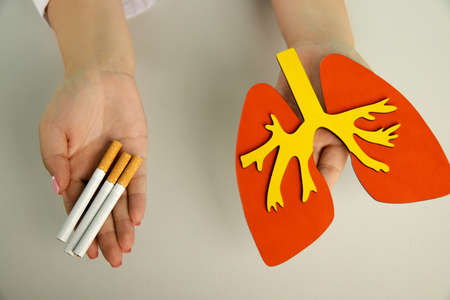 Wooden model of lung and cigarette in the hands of a nurse. Top view 版權商用圖片