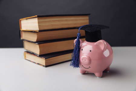 Pink piggy bank with books. College, graduate, education concept