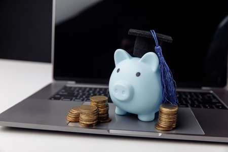 Blue piggy bank in cap on keyboard. Online education