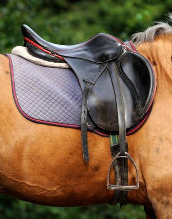 馬の背中に鐙と鞍 写真素材 - 43652478