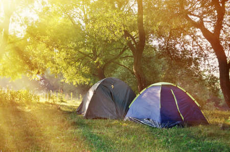 summer sport: Tourist tent in forest camp among meadow