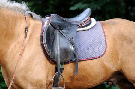 stirrup: Saddle and stirrup horse close up. Stock Photo