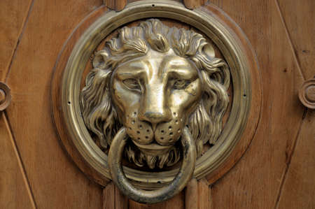 entrance gate: Head lions at the door. Stock Photo