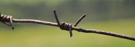 protect home: Barbed wire for protect home Stock Photo