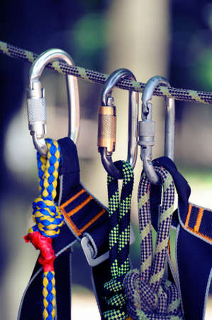 carabiner: Climbing sports image of a carabiner on a rope in a forest