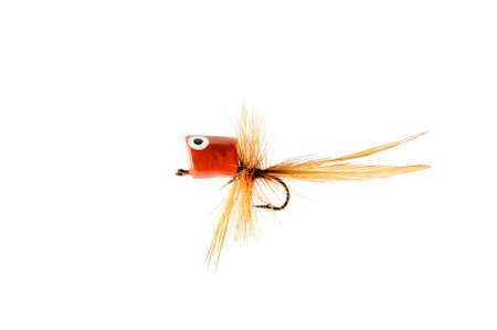 Fly for fishing ( poppers ) isolated on white background .