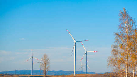 Group of wind turbines. Renewable energy. Electrical windmills.