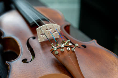 Violin musical instrument close up isolated on black