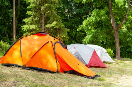 Camping and tent under the forest. Camping tent in a camping in a forest