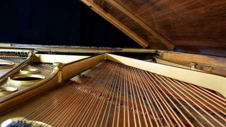 strings of a Studio Grand Piano.