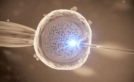 Colorful 3d Illustration of a in-vitro fertilization of an egg cell Foto de archivo