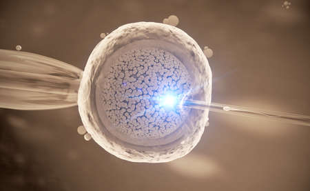 Colorful 3d Illustration of a in-vitro fertilization of an egg cell Stockfoto