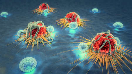 3d illustration of cancer cells and lymphocytes Banco de Imagens