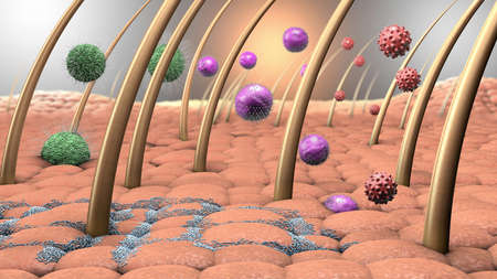 Illustrazione 3D di virus e batteri che entrano nella pelle umana Archivio Fotografico