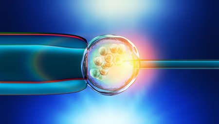 Colorful 3d Illustration of a in-vitro fertilization of an egg cell Standard-Bild