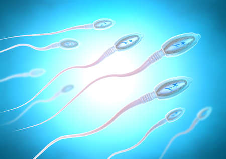 3d illustration of sperm cells moving to the right towards egg cell