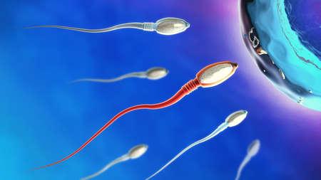 3d illustratie van spermacellen die naar rechts naar eicel beweegt Stockfoto