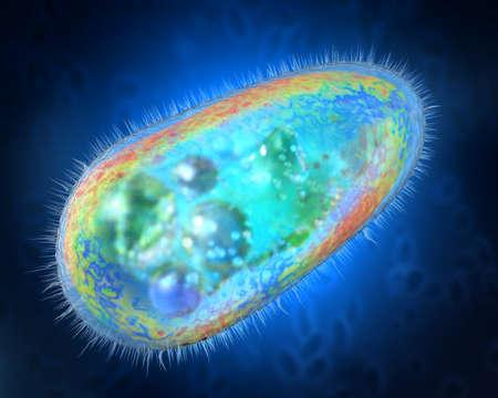 Illustration 3D de protozoaires transparents et colorés ou d'un organisme unicellulaire Banque d'images - 87594568