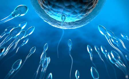 3d illustration of transparent sperm cells swimming towards egg cell