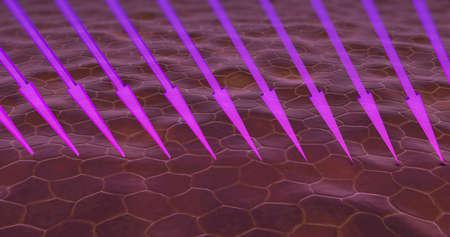 3d illustration of ultra violet rays entering skin cells