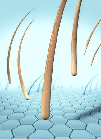3d illustration of several falling hairs that detach from the skin