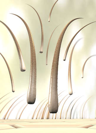 3d illustration of several falling hairs that detach from the skin called hair loss Stock Photo