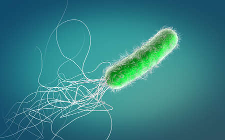 Single green colored multiple antibiotic resistant Pseudomonas aeruginosa bacterium - 3d illustration Stock fotó