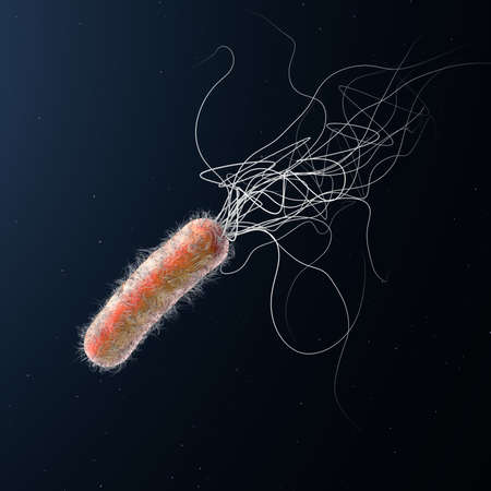 Single orange colored multiple antibiotic resistant Pseudomonas aeruginosa bacterium - 3d illustration