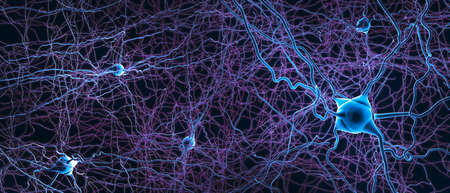 Neuroni collegati o cellule nervose - illustrazione 3d