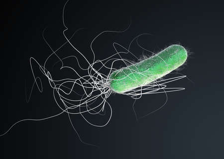 Green colored multiple antibiotic resistant Pseudomonas aeruginosa bacterium - 3d illustration