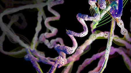 Kette von Aminosäuren oder Biomolekülen namens Protein - 3D-Darstellung