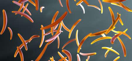 Flowing malaria parasite, called sporozoites, into bloodstream - 3d illustration