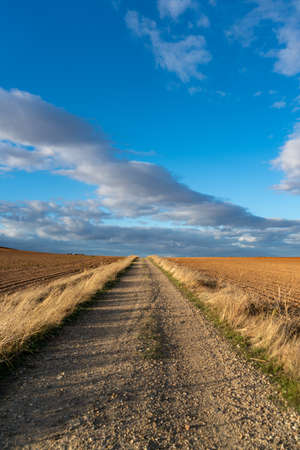 Dusty road through a beautiful grassy landscape in Andalusia in Spain