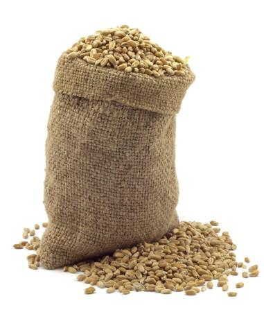 bolsa de pan: Bolsa de trigo sobre un fondo blanco