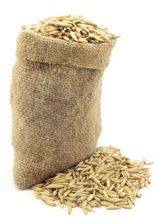 oat plant: bag of oats on a white background