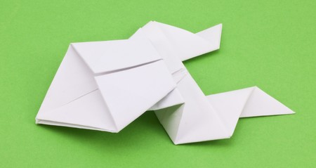 frog out of paper on a green background photo