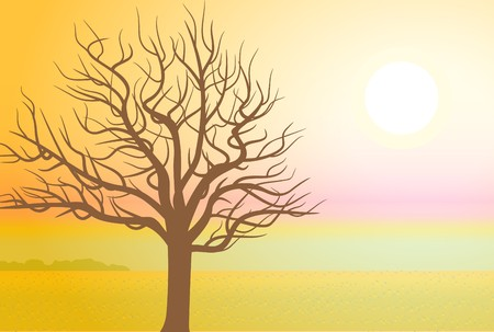 drawing. A tree in autumn at sunset. Vector